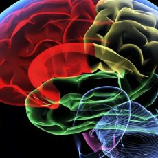 Komora hiperbaryczna w chorobie Parkinsona