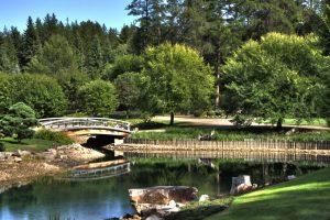Japanese_Garden_Devonian_Botanic_Garden_Edmonton_Alberta_Canada_31A